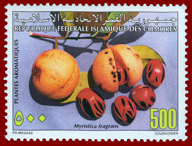 1997 Comores Stamp With Nutmeg