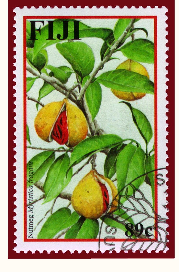 2002 Fiji Stamp of Nutmeg Myristica fragrans